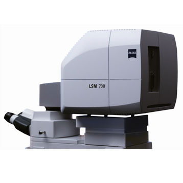 ZEISS LSM 700 Confocal Laser Scanning Microscope
