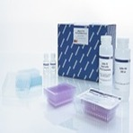 QIAquick 96 PCR Purification Kit (4)